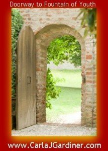 Doorway to Fountain of Youth 215x300 Fountain of Youth   LifeVantage Protandim