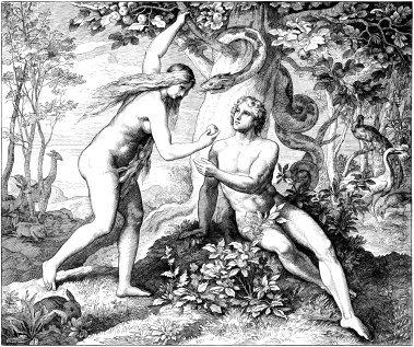 Adam Teaches Eve How To Mend A Broken Heart