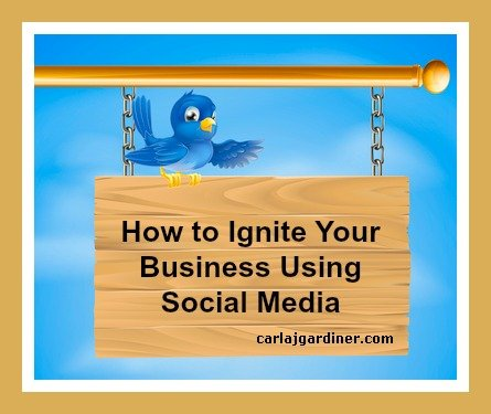 How to Ignite Your Business Using Social Media