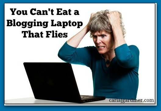 You Can't Eat a Blogging Laptop That Flies